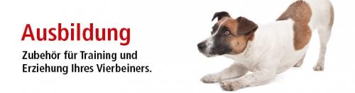Hundetrainung und Hundeausbildung mit ZOO und Co.