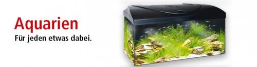Nano-Aquarien von Dennerle bei ZOO & Co.