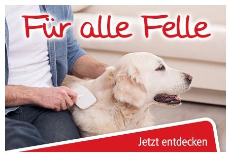 Zubehör für die Hundefellpflege online kaufen