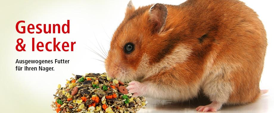 Futter, Heu und Snacks im ZOO & Co. Onlineshop