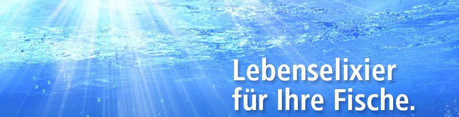 sauerstoff aquarium ausströmstein