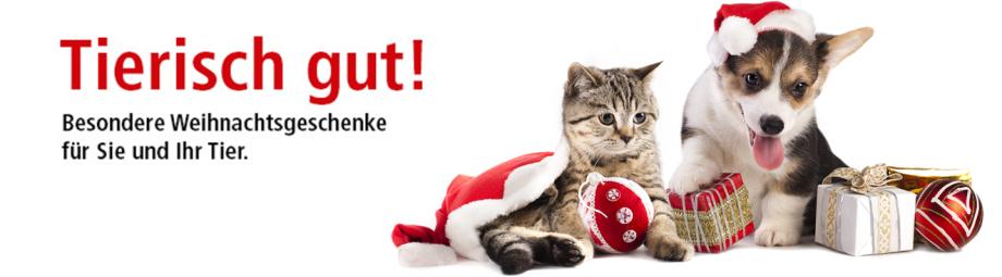 weihnachten, geschenke, hund, katze, kleintier