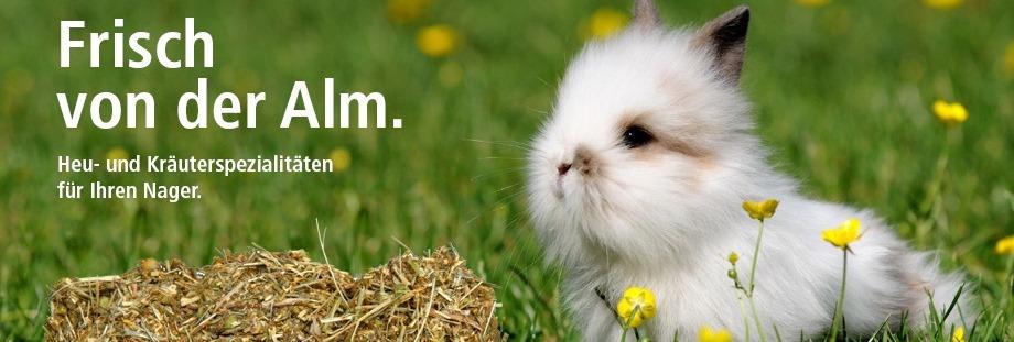Heu, Kräuter, Kaninchen