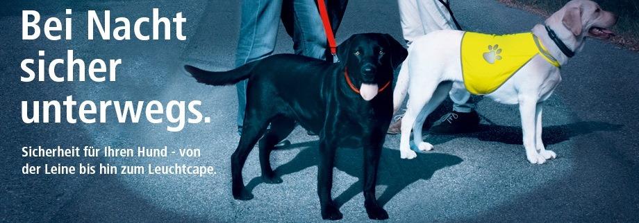 sicherheit im dunkeln hunde