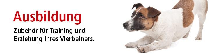 hundetraining, hundeausbildung