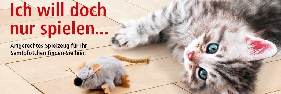 katzenspielzeug zoo und co