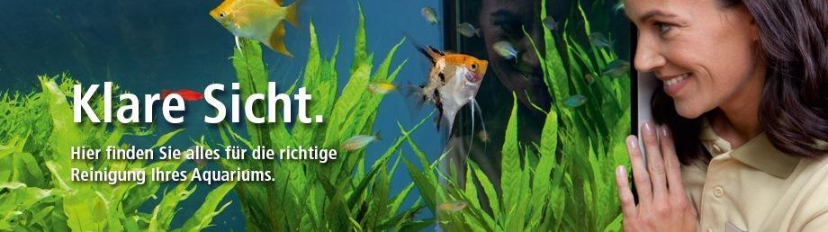 sauberes klares aquarium