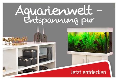 Aquarienkombinationen bei ZOO & Co. online bestellen