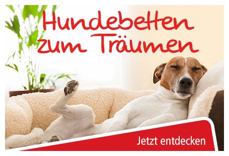 Hundebetten online bestellen