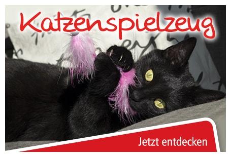 katzenspielzeug online bestellen