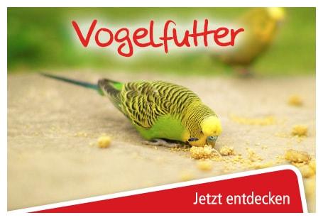 günstiges Vogelfutter online bestellen