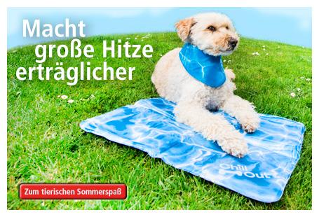 Abkühlung für Hunde kaufen